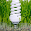 Energy-saving bulb in grass — Stock Photo #10706470