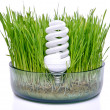 Energy-saving bulb in grass — Stock Photo #10706496