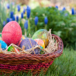 Royalty-Free Stock Photo: Easter eggs hunt