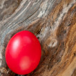 Easter red egg — Stock Photo #9764575
