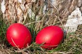 красный пасхальное яйцо — Стоковое фото