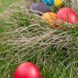 Easter eggs — Stock Photo #9784684