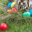 Easter eggs in nest — Stock Photo #9798030