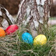 Easter nest — Stock Photo #9802615