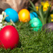 Easter egg — Stock Photo #9824497