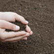 Soil in hands — Stock Photo #9843175