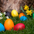 Easter eggs — Stock Photo #9844793