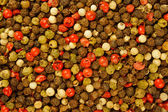 Mixed peppercorns background — Stock Photo