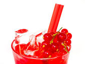 Cocktail — Stok fotoğraf