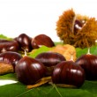 Chestnuts leaves and chestnuts — Stock Photo