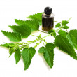 Foto de Stock  : Nettle extract