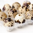 Stock Photo: Quail eggs in the container