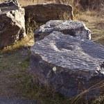 Fossil footprints — Stock Photo