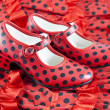 Heeled shoes with clothing typical Sevillian - Foto Stock