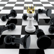 Pawn king — Stock Photo #10715890