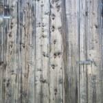 Wood background — Stock Photo #10033031
