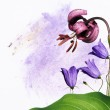 Colorful illustration with floral elements. useful design element. — Stock Photo #10034150