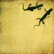 Lovely background image with close-up of a couple of salamanders. useful design element. — Stock Photo