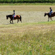 Two anonymous horse riders in a field in the swiss alps — Foto de Stock