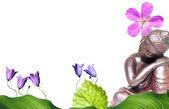 Flora pacífica de buda e primavera — Foto Stock