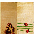Lovely set of banners with floral elements and earthy textures - Stock Photo