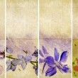 Stock Photo: Lovely set of banners with floral elements and earthy textures