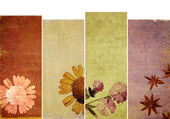 Lovely set of banners with floral elements and earthy textures — Stock Photo