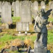 Statue of a stone cherubim angel in a cemetery in london, england — Stock Photo