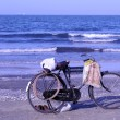 Old bicycle by the mediterranean sea in egypt — Foto Stock