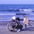 Old bicycle by the mediterranean sea in egypt — 图库照片
