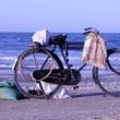 Old bicycle by the mediterranean sea in egypt — Stock Photo
