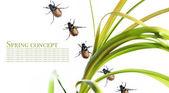 Conceito de primavera. flora e besouros contra fundo branco — Foto Stock