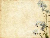 Joli élément de fond et design floral — Photo