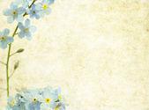Krásné květinové pozadí a konstrukční prvek — Stock fotografie