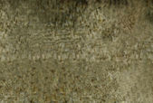 Abstract golden brown background image with interesting texture which is very useful for design purposes — Stock Photo