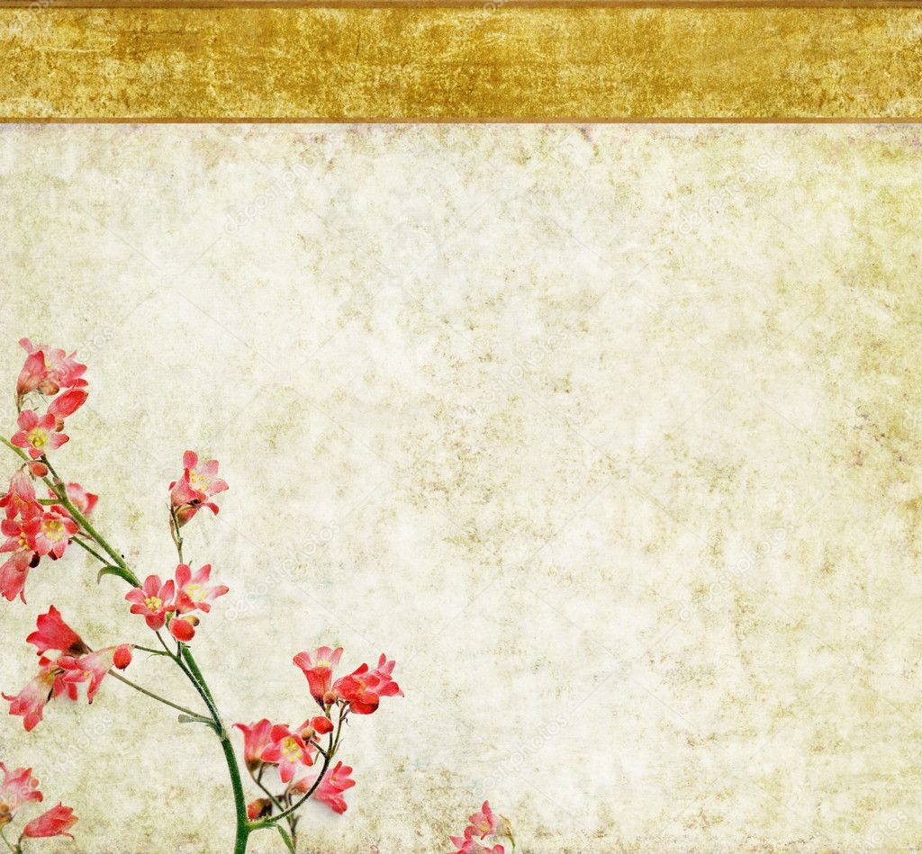 Floral background and design element  — Stock Photo #10203335