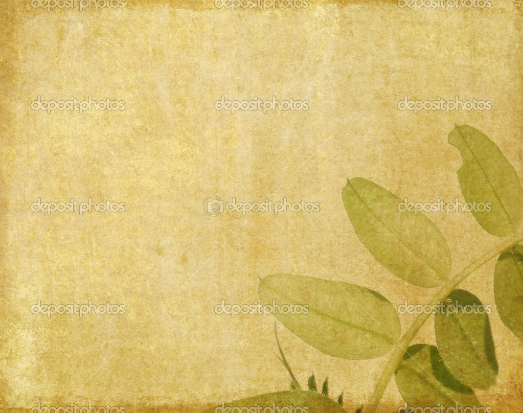 Lovely brown background image with interesting earthy ... - photo#13