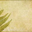 Royalty-Free Stock Photo: Earthy floral background image