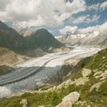Aletsch glacier (switzerland) — Photo