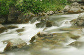 Flowing river (long exposure image) — Stock Photo