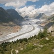 The Great Aletsch glacier (switzerland) - Stock Photo