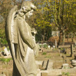Beautiful statue in english cemetery - 图库照片