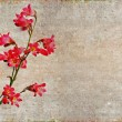 Lovely background image with floral elements. useful design element. - Stock Photo
