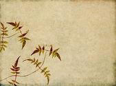 Dünyevi çiçek tasarım öğesi — Stok fotoğraf