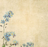 Earthy background image with floral elements. useful design element. — Stock Photo