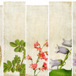 Royalty-Free Stock Photo: Lovely set of banners with floral elements and earthy textures. useful design elements