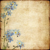 Lovely background image with floral elements. very useful design element. — Stock Photo