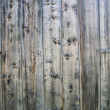 Wood background — Stock Photo #9955659