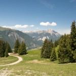 Swiss alpine landscape — Stock Photo #9957457