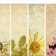 Lovely set of banners with floral elements and earthy textures. useful design elements - Stock Photo